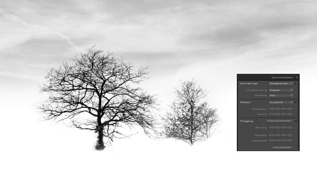 Lightroom bibliotheek module (3)