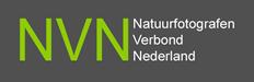 nvn-logo