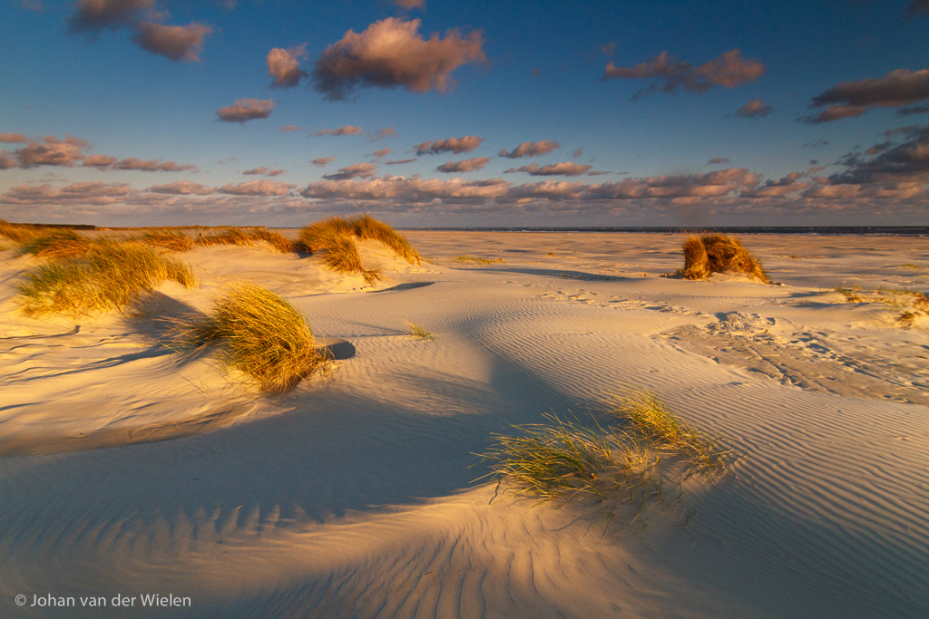 Gebieden fotograferen Natuurfotografie.nl:Schiermonnikoog