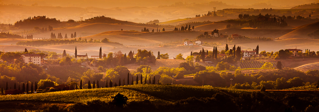 Fields of gold - Tuscany, Italy
