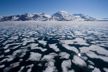 Liefdefjord – Spitsbergen