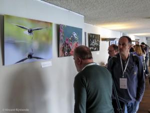 Expositie van finalisten fotowedstrijden