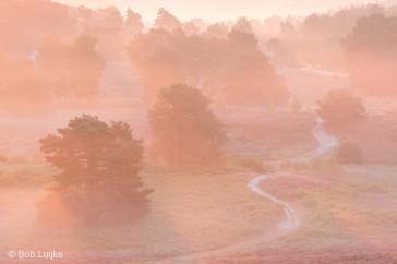 Bob_Luijks-landschap_telelens