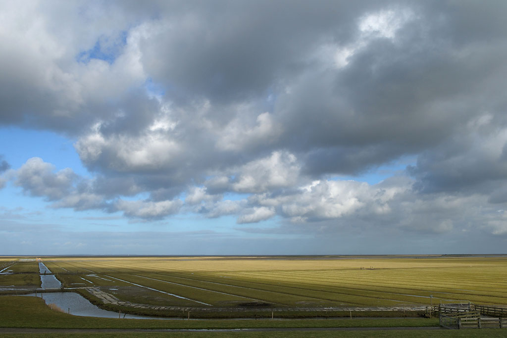 Gebieden fotograferen Natuurfotografie.nl:Noard-Fryslân Bûtendyks