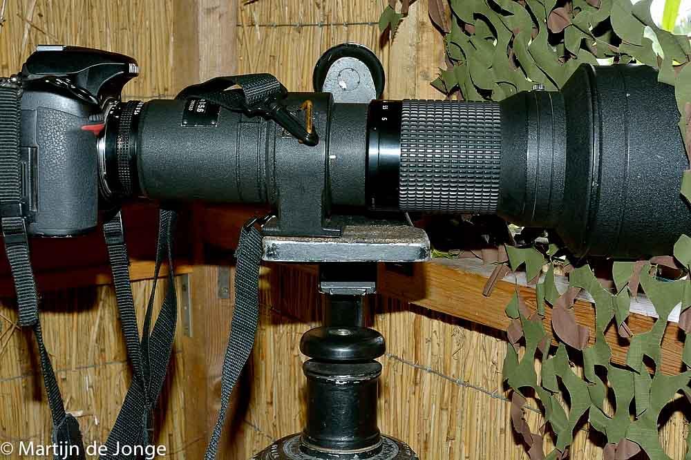 Nikon 600mm met D7100 in IJsvogelhut Amsterdam Zuidoost.