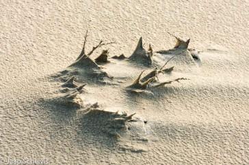 Zandsculpturen, sand sculptures