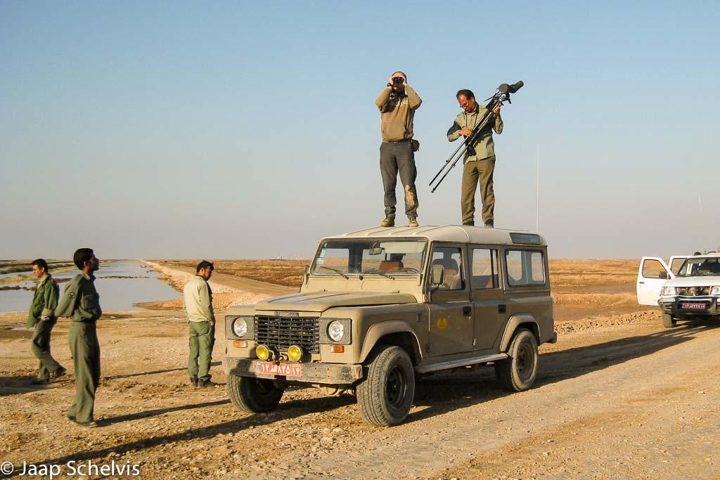 Vogels tellen in de grensmoerassen van Iran en Irak, vreedzaam wetenschappelijk onderzoek waar ooit een bloedige veldslag plaatsvond.