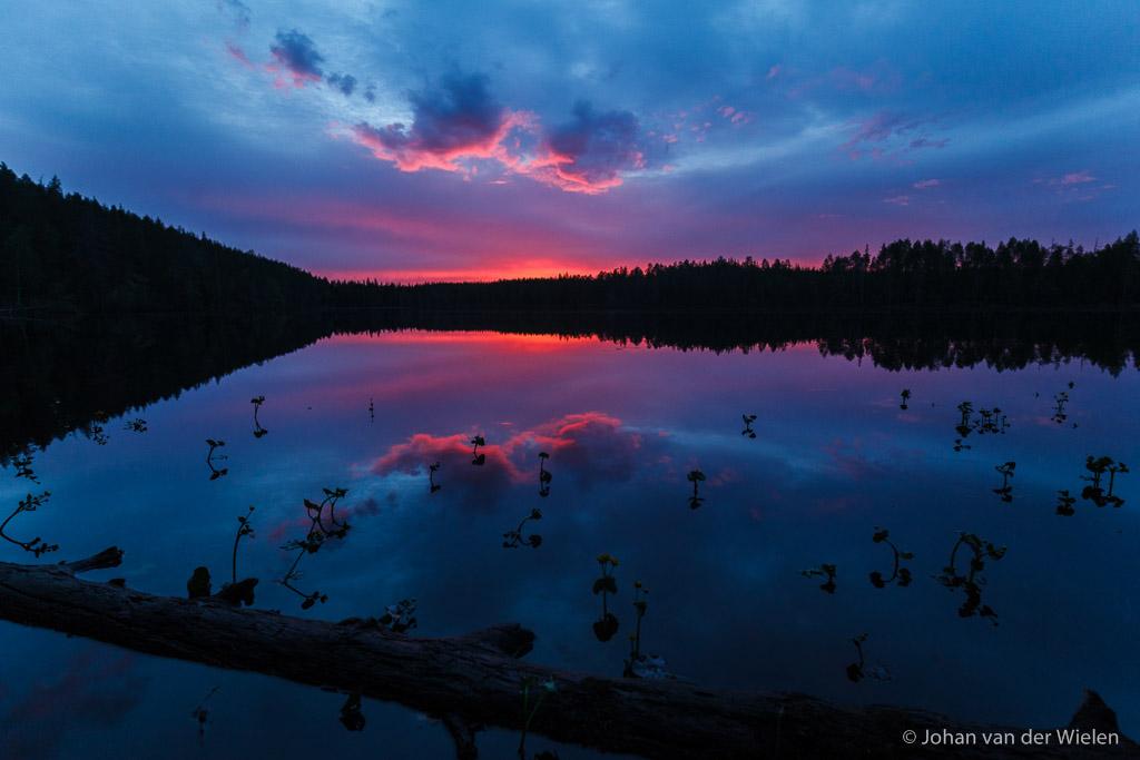 Een uur ná zonsondergang kleurt de hemel, uiteraard met perfecte reflectie in het stille water. Gelukkig waren er nog dotterbloemen