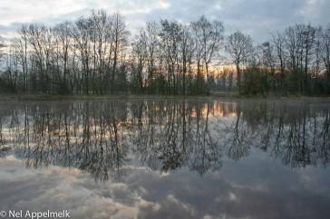beekbergerwoud_zonsopkomst-Nel_Appelmelk