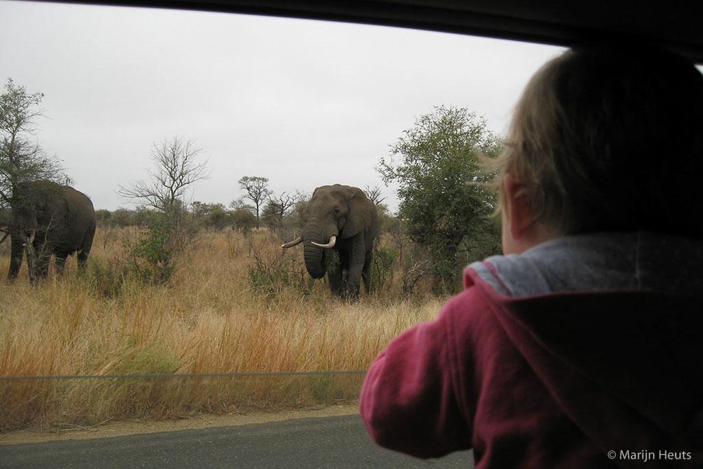 Een onschuldige wandeling met een compactcamera kan uitlopen op een gezinsvakantie naar Afrika. De zwaarste tas bevat enkel fotospullen. De compact gaat nog steeds mee, maar is over gegaan in (veel) kleinere handen.