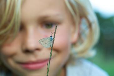 Verwondering bij het zien van een gentiaanblauwtje
