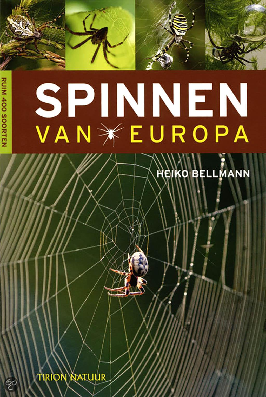 spinnen_van_europa