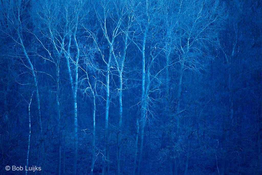 Het blauwe uurtje voor zonsopkomst, bewust blauw gehouden.