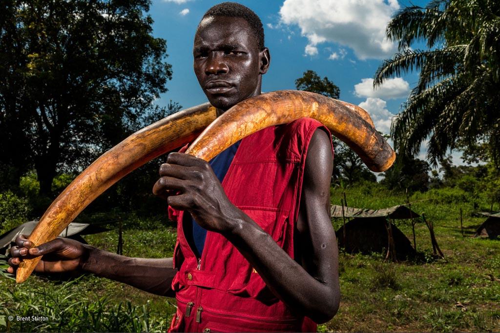 Winnaar 'Wildlife Photojournalist - Story Award'.