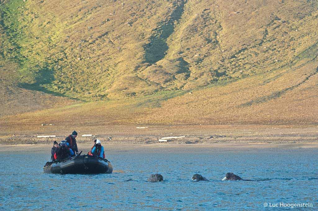 De schoonheid van Spitsbergen in augustus.