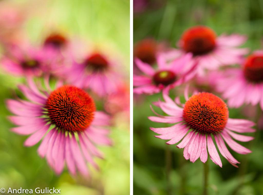 Foto links gemaakt met Composer Pro en DGO F2.8. foto rechts gemaakt met de Nikon 105mm F2.8.