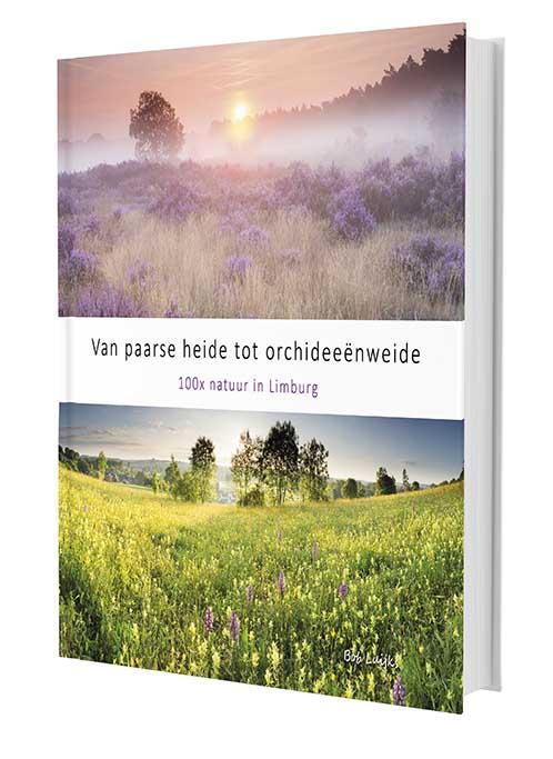 Bob_Luijks-paarse_heide