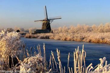 Deze foto is genomen in de winter met veel rijp aan planten en bomen. Genomen vanaf de linkerkant richting Zevenhuizen.