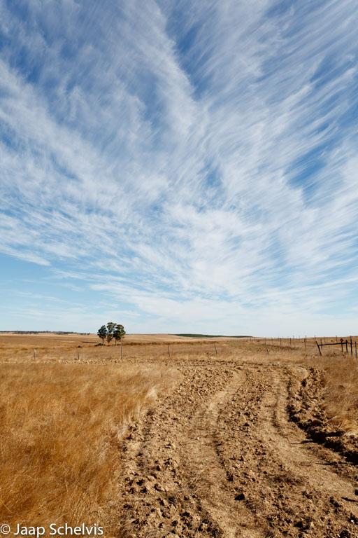 Het belang van de boeiende wolkenlucht wordt duidelijk als je de lucht afdekt met je hand.