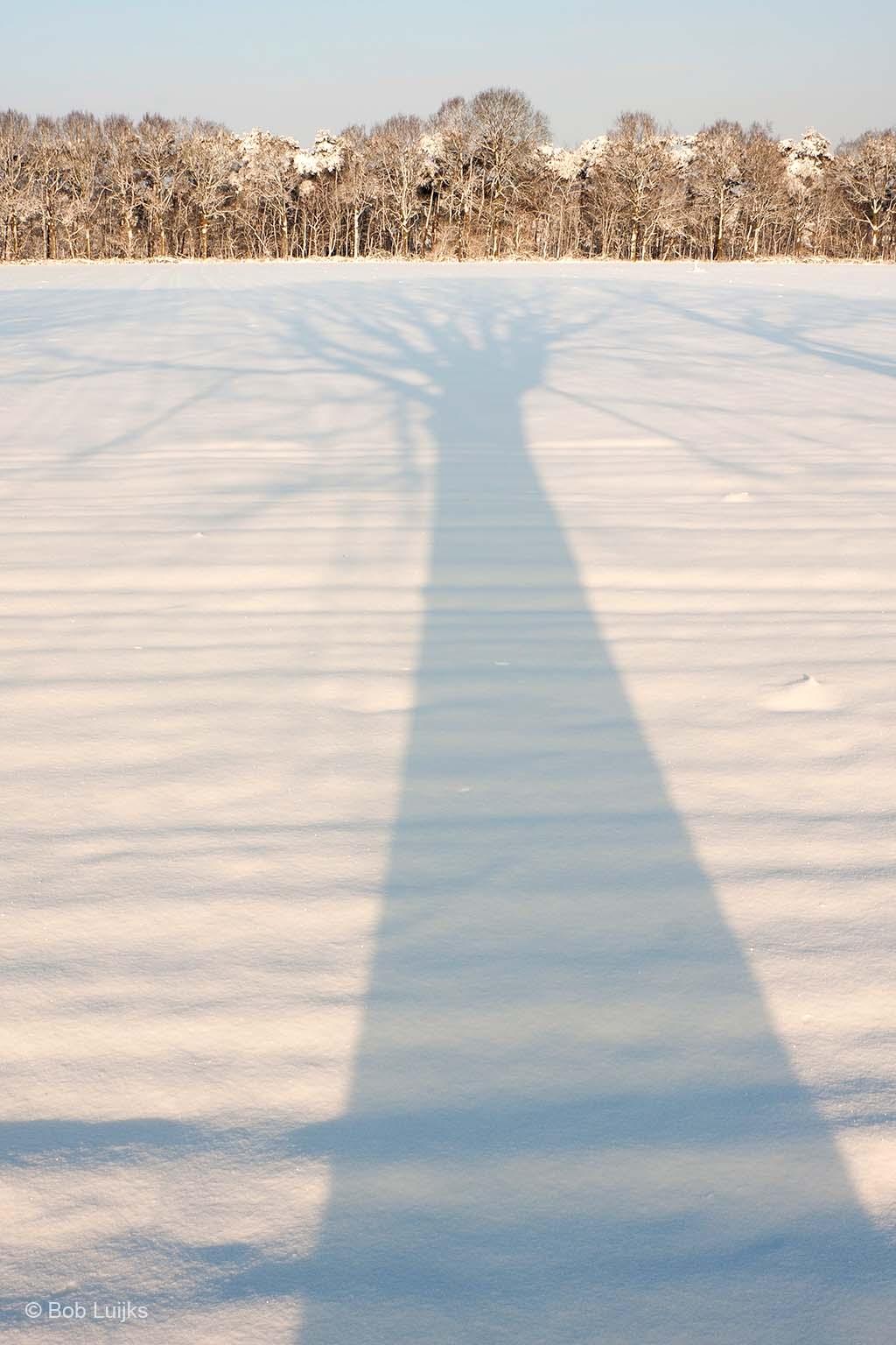 Door de laagstaande zon krijg je enorm lange schaduwen, die zich prachtig aftekenen op het sneeuwtapijt.