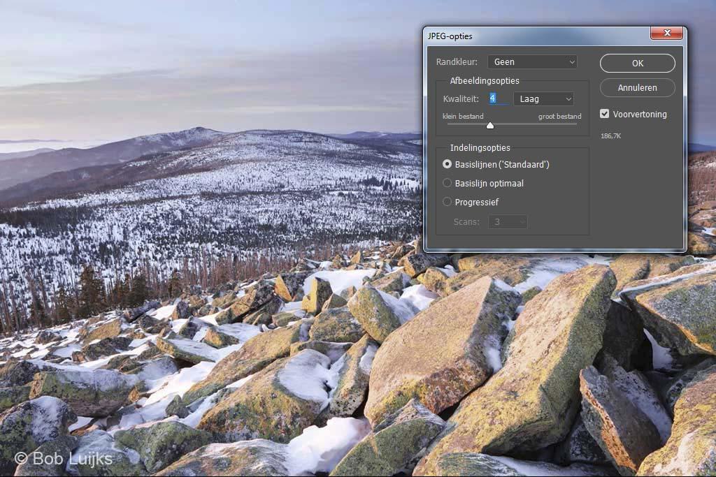 JPEG kwaliteit van 5 of minder is meer dan genoeg voor het web.