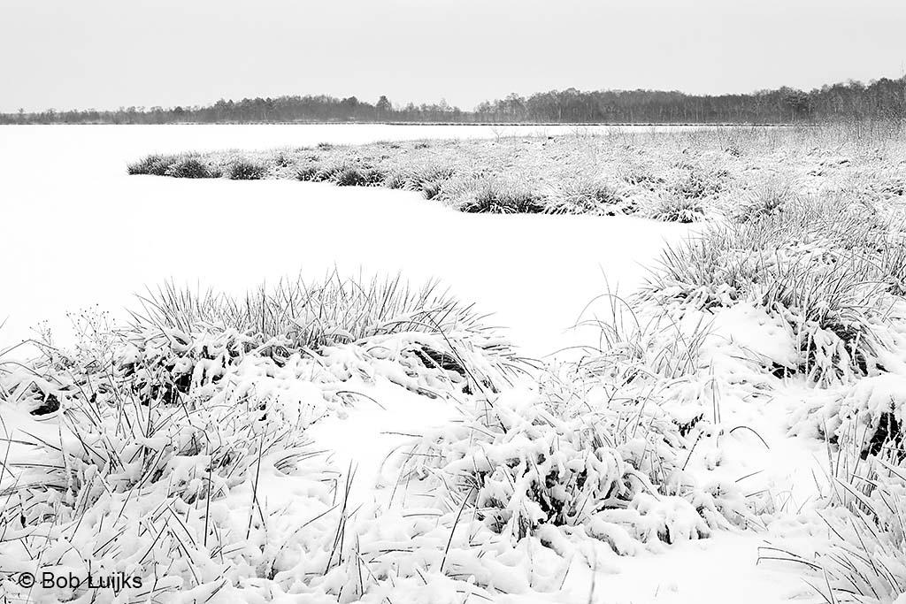 De eenvoud van sneeuw i.c.m. grijs weer.