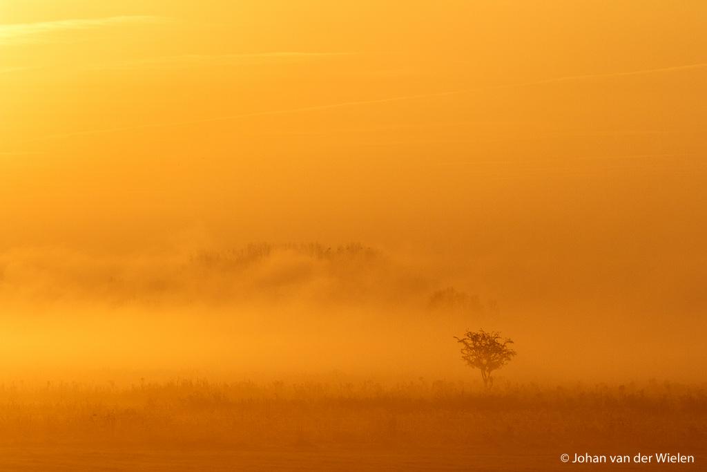 Knalgele foto van het vroege ochtendlicht... dat kan toch nooit zo zijn als in de werkelijkheid?