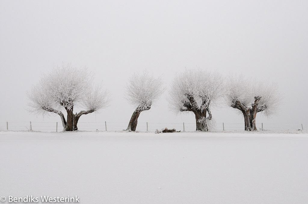 landschappen met sneeuw
