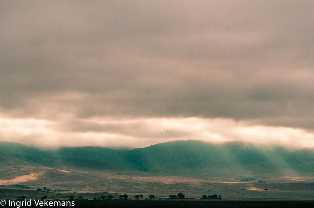 Ngorongoro Spotlights - zonsopgang in de Ngorongoro Crater
