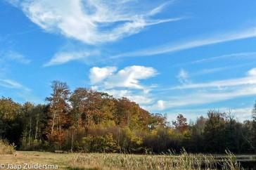 De blauwe lucht contrasteert mooi met de herfstkleuren.