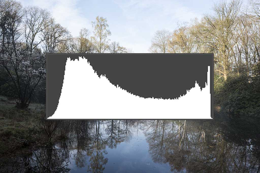 Het histogram van de basisfoto, alles netjes binnen de marges.