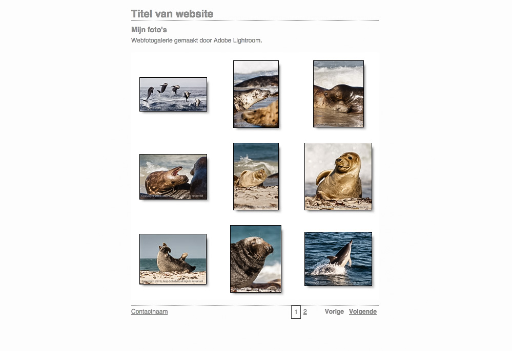 Zelfs zonder iets in te stellen geeft de knop 'Voorvertoning in browser...' al een indruk hoe een willekeurige set foto's er op een eigen webgalerie uit kan komen te zien.