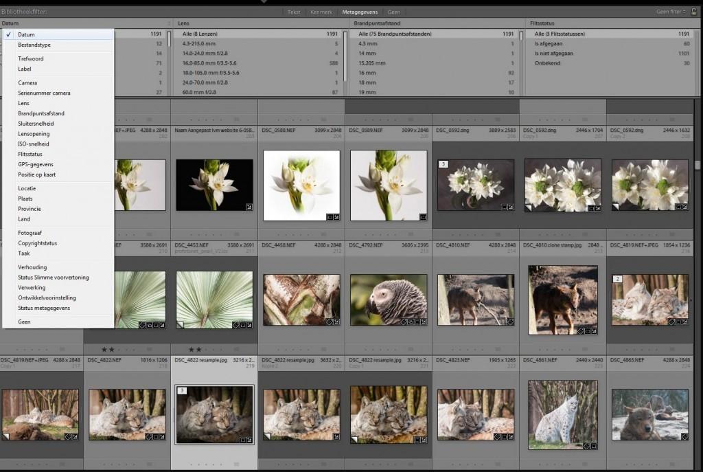 Je kunt snel je foto's in de bibliotheek van Lightroom filteren op metagegevens met de sneltoets \ (backslash).