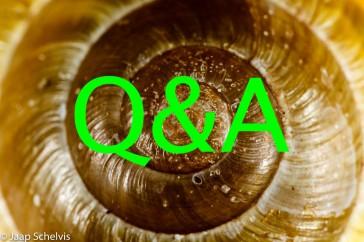 Q&A > Questions & Answers > Vragen en antwoorden!