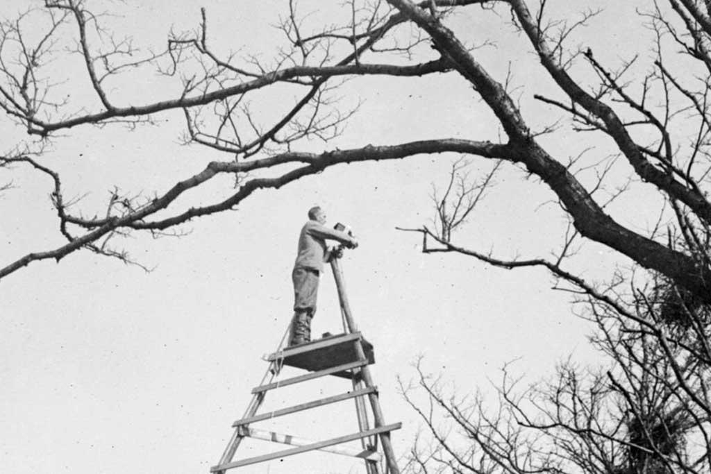 Pioniers in de Nederlandse natuurfotografie.