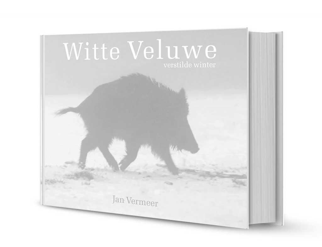 Witte Veluwe van Jan Vermeer.