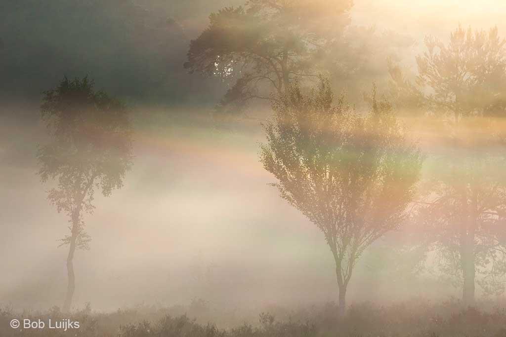 Iriserende mist