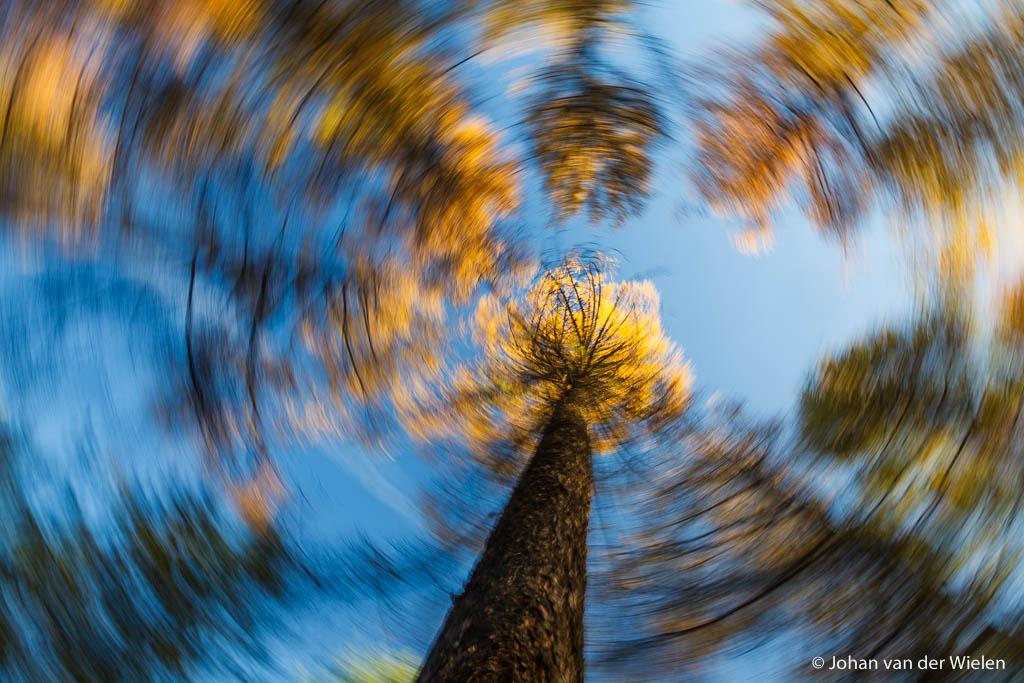 Herfst: de tijd voor creatieve uitspattingen!