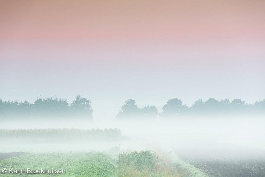 Voor zonsopkomst mist in combinatie met de aardschaduw, de prachtige pasteltinten van aardschaduw en mist.