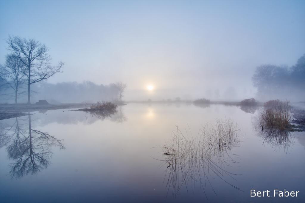 Zucht, voor de zoveelste keer een grijze zonsopkomst