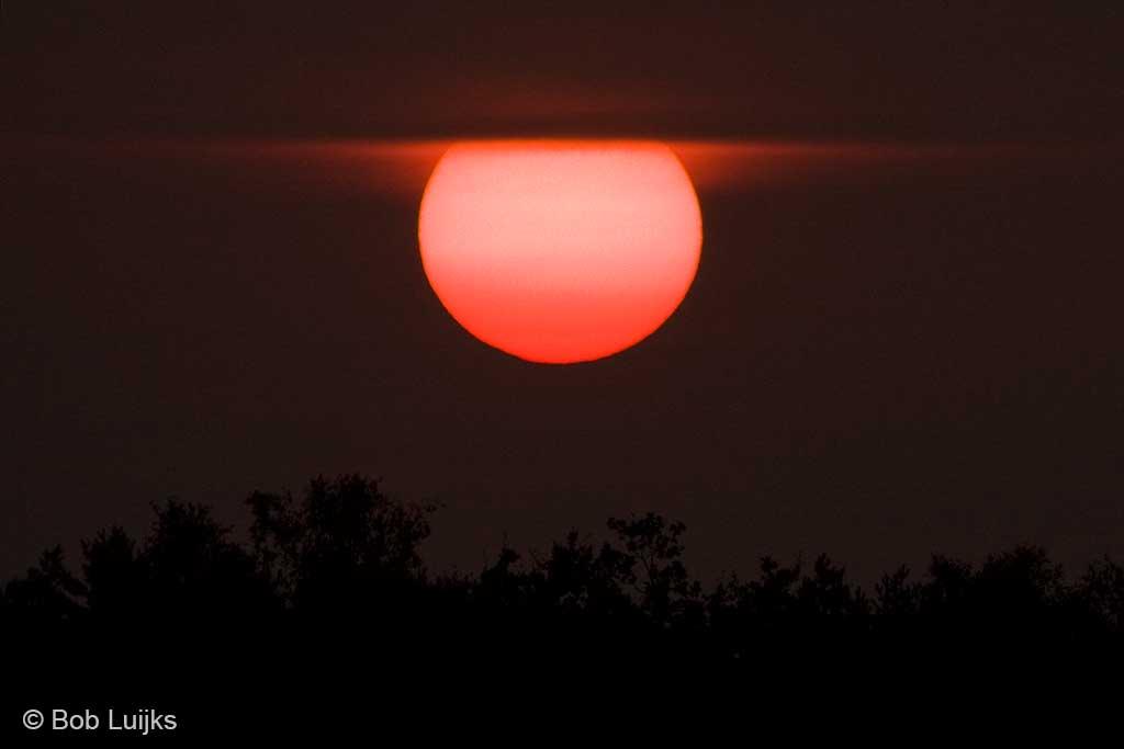 Er is geen reden om de zon hier niet in het midden te plaatsen.