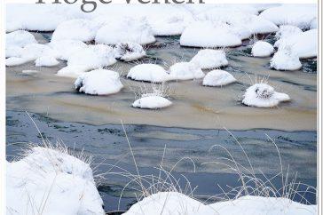 cover_hoge_venen_boek