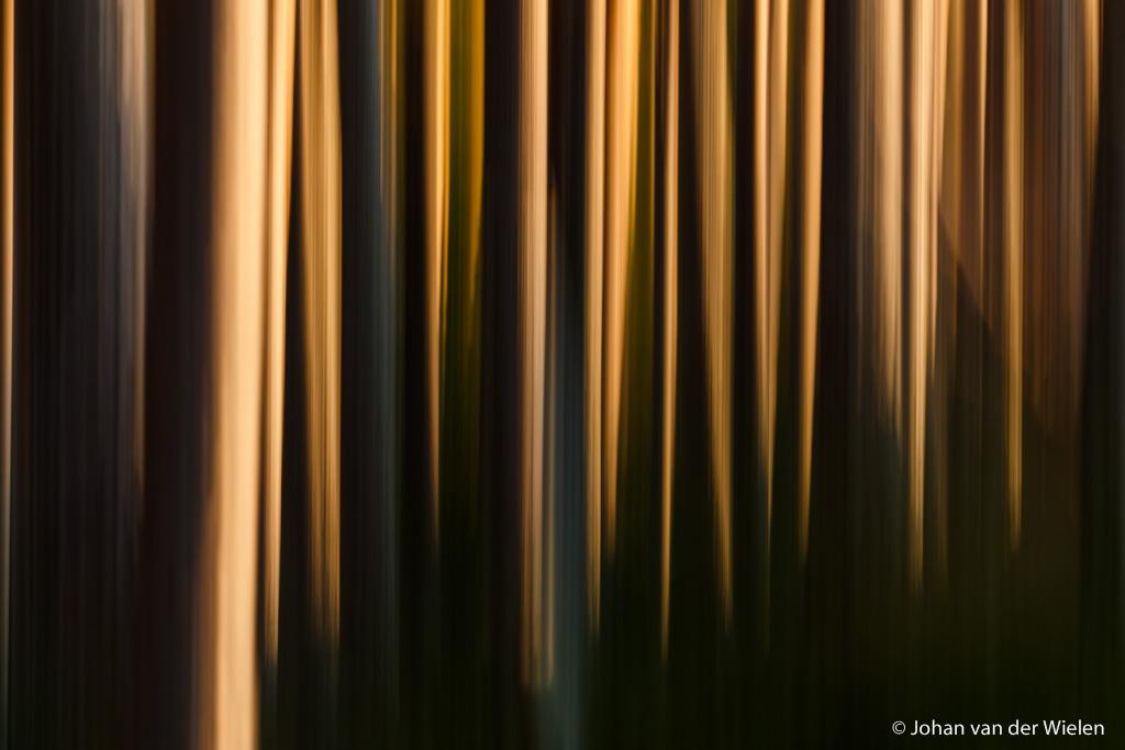 abstractie door spel van beweging, licht en lijnen