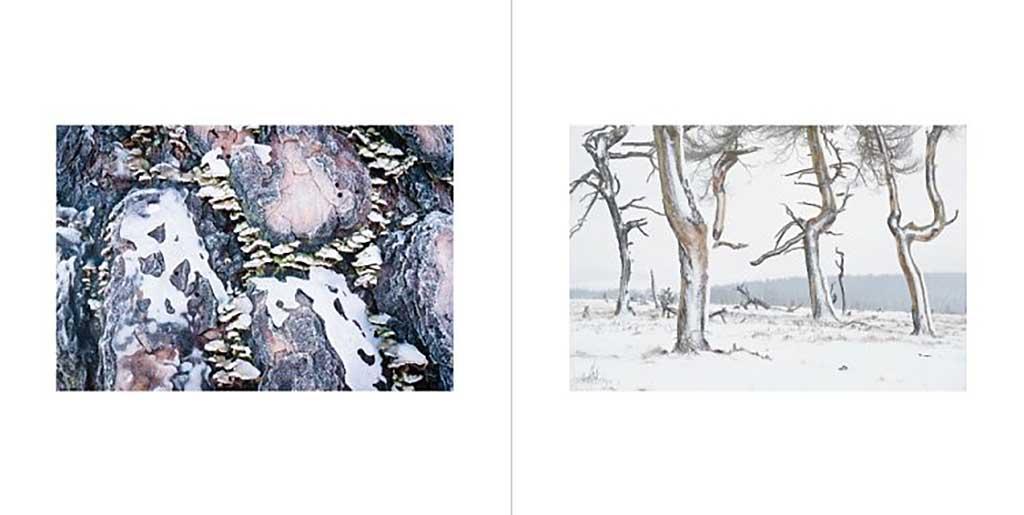 winter_24