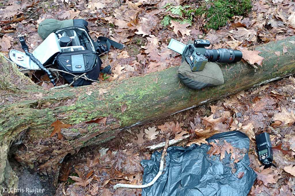 Een voorbeeld van een 'studio' in het bos om Springstaartjes te fotograferen.