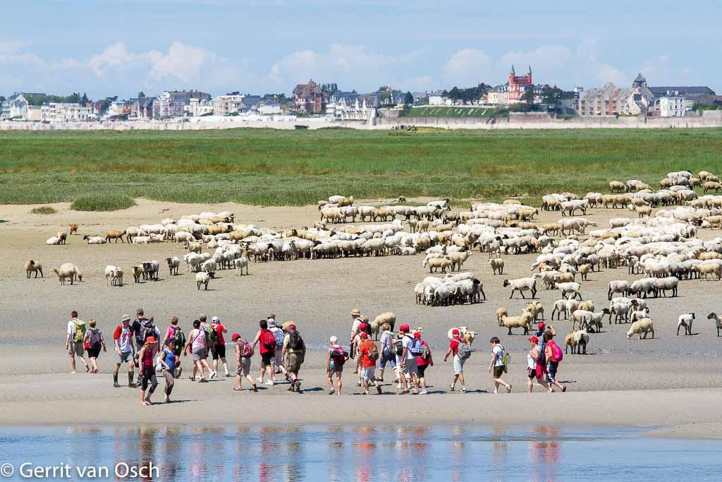 Gebieden fotograferen Natuurfotografie.nl:Baai van de Somme
