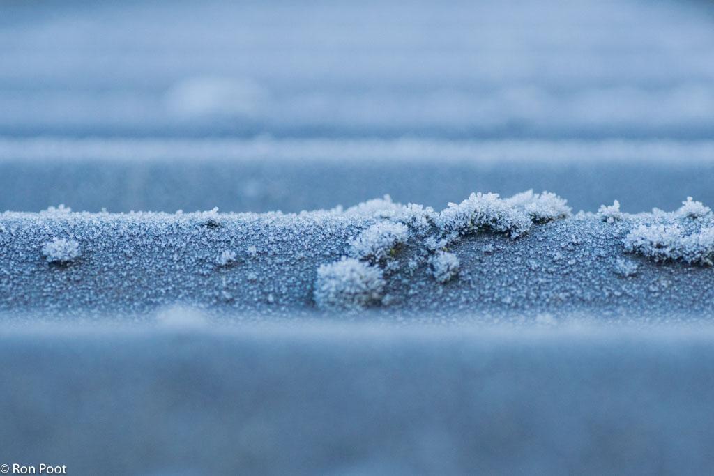 Muisjesmos op het dak, op een winterse morgen.