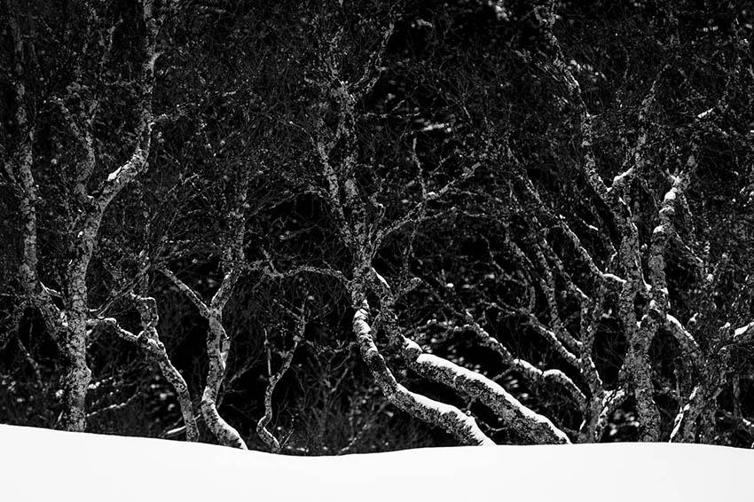 Hoge Venen in de sneeuw