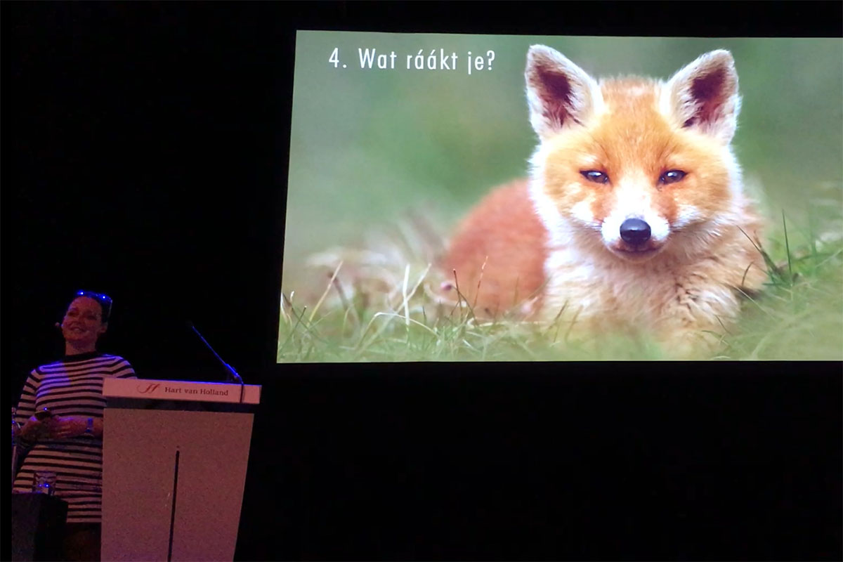Presentatie Roeselien Raimond - What Does the Fox Say